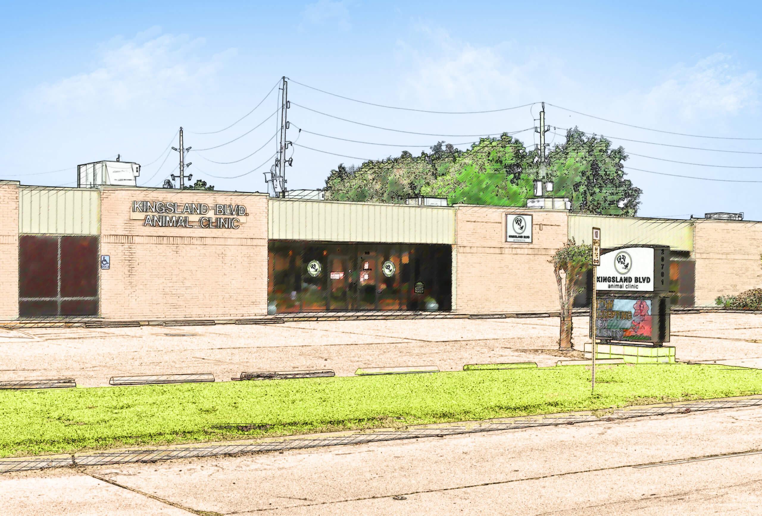 Exterior Kingsland Blvd Animal Clinic building